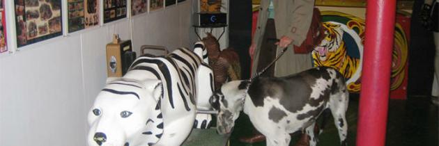 Miller's Zoo Vintage Tiger Ride