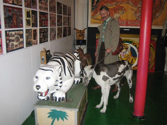 Millers Zoo Vintage Tiger Ride