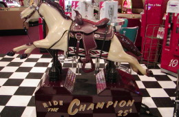 Frank's Champion Horse –  Berryville, VA